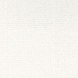 Conqueror Texture blanco común