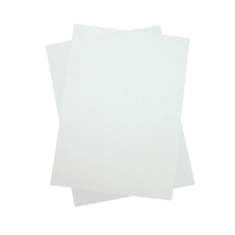 Cartulina Pergamenata blanca